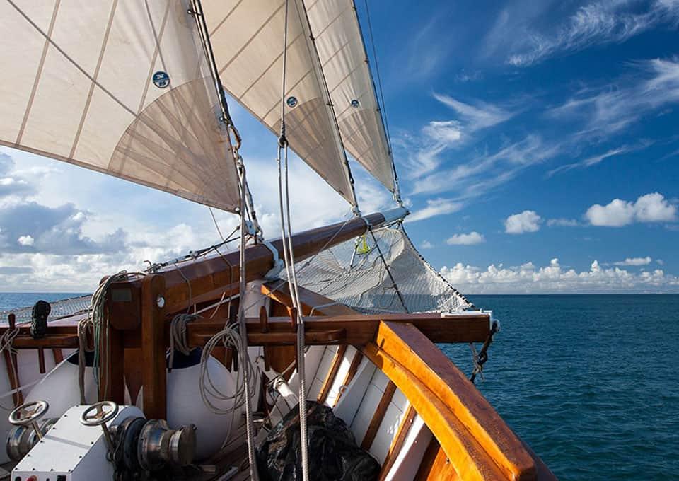The Ocean Mapping Expedition: Neues von Fleur de Passion