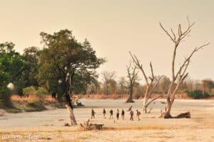 Norman-Carr-Safaris17-29