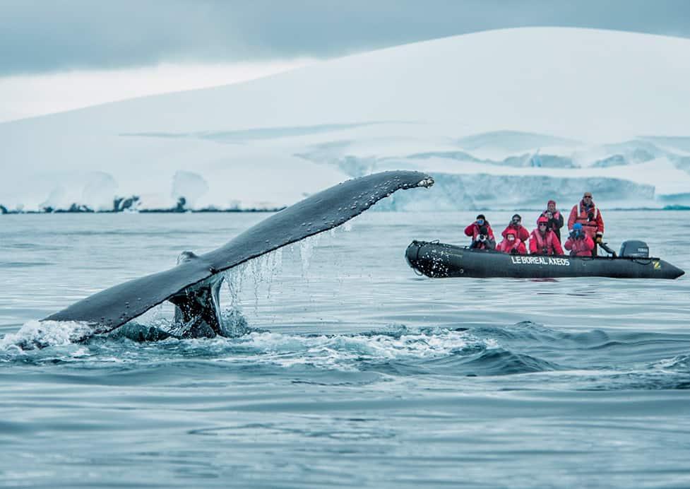 Kuoni Cruises Ponant : voyager à la française sur toutes les mers du monde